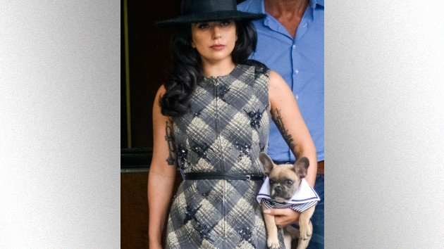Gaga with Koji; MPI67/Bauer-Griffin/GC Images)